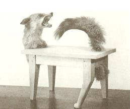 The Wolf-Table